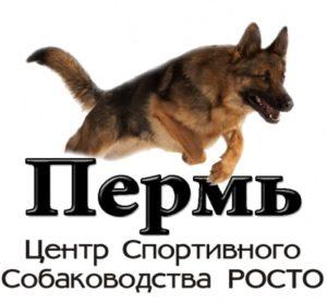 ЦССВО (ПОКСС) РОСТО. Россия, Пермь