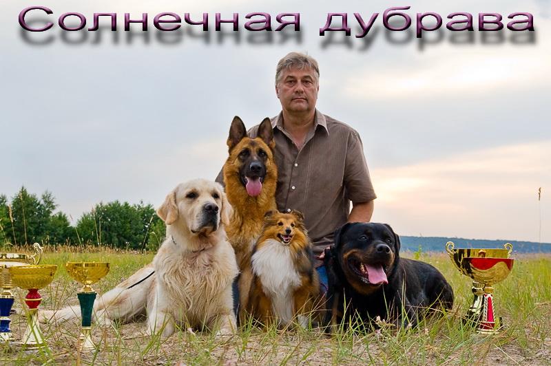 """Питомник """"Солнечная дубрава"""""""