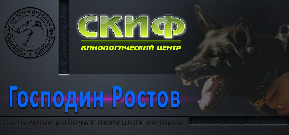 «Господин Ростов» - питомник